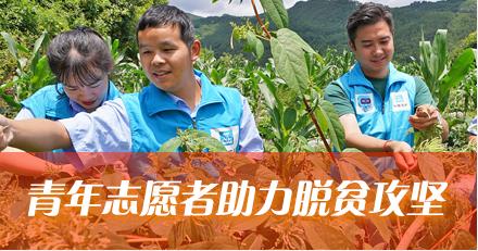 中国青年志愿交流-最终-3_03(3).png